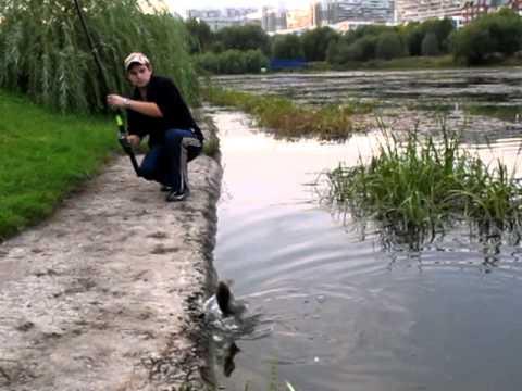 Ловля карася, ловля рыбы, рыбалка