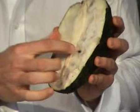 Guanabana (Soursop) in…NYC? Really?? How?