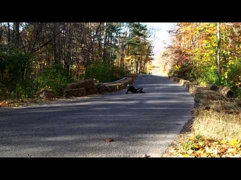 Gnarly 55+/- mph Crash at Soldiers of Downhill 2012