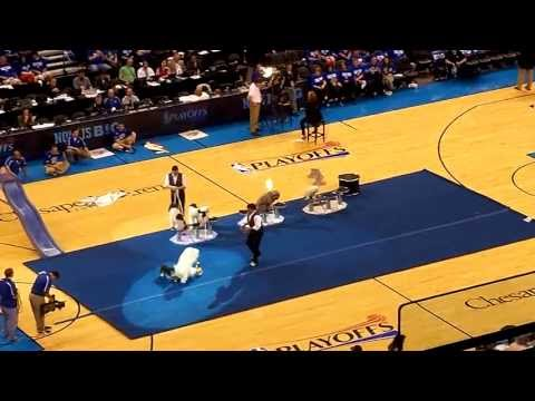 thunder rockets game 1 halftime show