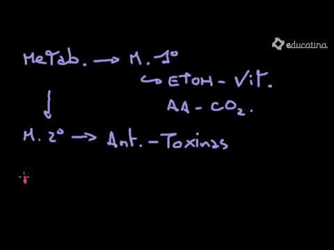Microorganismos y biotecnología I - Biotecnología - Educatina