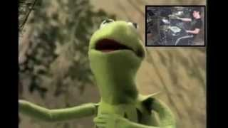 Watch Kermit The Frog Bein