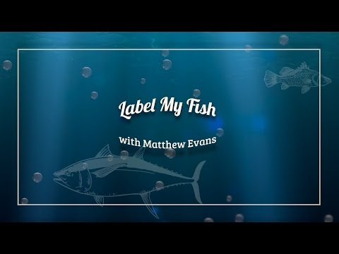 Label My Fish with Matthew Evans
