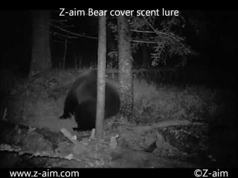 Z-aim bear cover scent- 