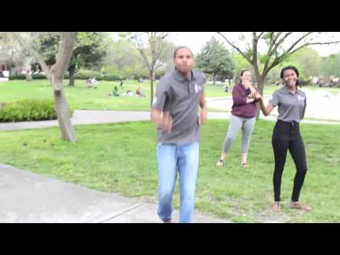 Happy Knights (Happy Parody by UCF LEAD Students)