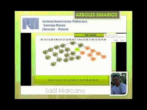 arboles binarios estructura de datos
