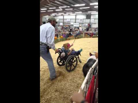 Southern NM state fair livestock auction
