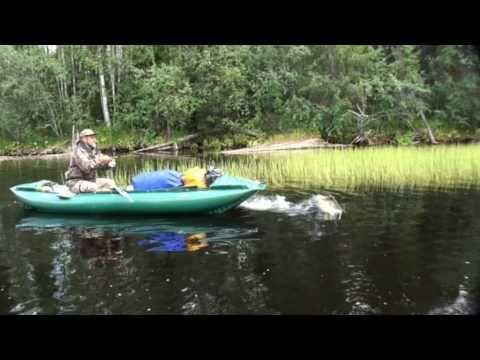 сплав на лодке по реке ахтубе