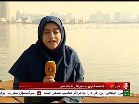 Iran Migrating Birds In Persian Gulf Martyrs Lake, Tehran City پرندگان مهاجر درياچه خليج فارس ايران