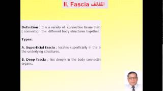 Magdy Said Anatomy Series,An intoduction to human anatomy,introduction,3-skin and fascia