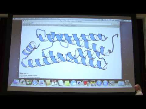 4  Kevin Ahern's Biochemistry   Protein Structure I Merge