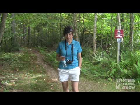 Bay of Fundy Travel Show #9 - Fundy Trail, New Brunswick