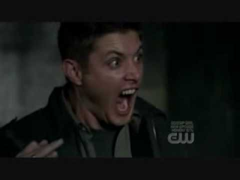 Supernatural cat scream