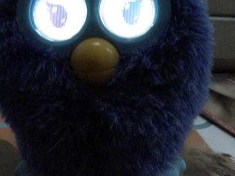 Furby (NL)