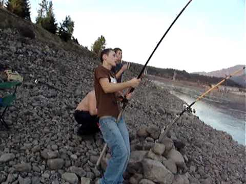 off the hook sturgeon bank fishing bonneville dam part 1