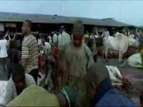 Matadero en Nigeria. Workingman