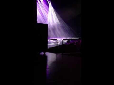 Gad Elmaleh une fan monte sur scène a Genève