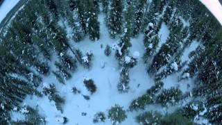 Alaska Spirit of the Wild 1997 - Alaska Linh Hồn Hoang Dã  - SubViệt