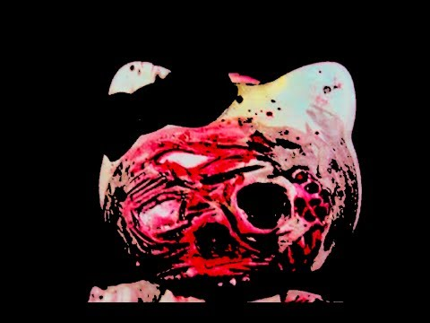 El homicidio de Hello Kitty