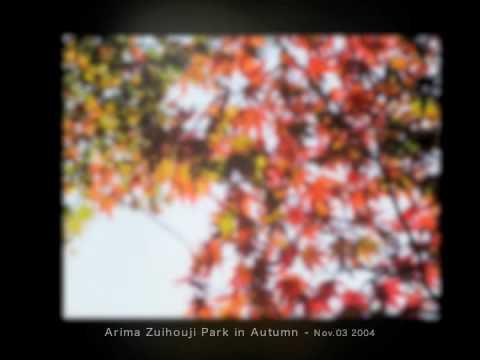 有馬温泉 瑞宝寺公園 紅葉 2004.11/03