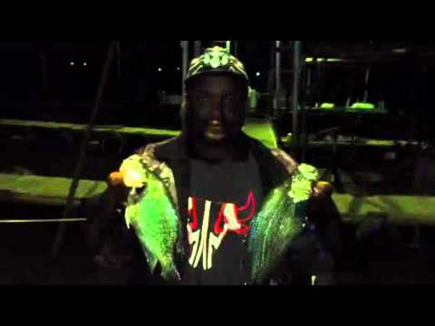 Crappie Fishing Docks Night!  NEW