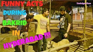 Download Funny acts during Bakrid l The Baigan Vines 3Gp Mp4