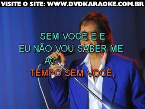 Roberto Carlos   Amor Perfeito