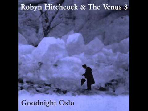 Robyn Hitchcock & The Venus 3 - Hurry for the Sky