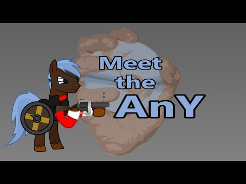 Meet the AnY: TF2/Brony Reviewer Project Teaser