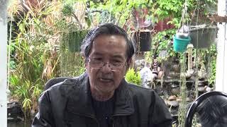 Âm Nhạc Miền Nam Đã Nuôi Dưỡng Chúng Tôi-Nguyễn Ngọc Già