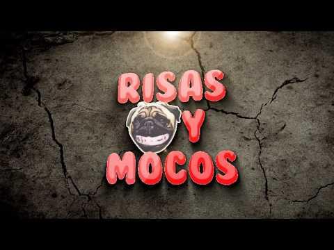 Videos De Risa De Caídas De Hombres, Mujeres Y Animales 2016 ? Para Orinarse De La Risa ?