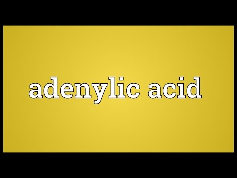 Header of Adenylic acid