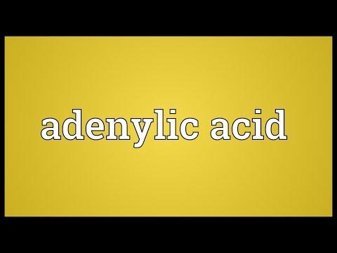 Header of Adenylic acid