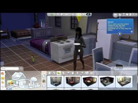 The Sims 4 : Review/Twins cheat?
