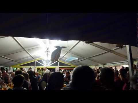 Indoor ultralight blimp. Hahnweide 2011.