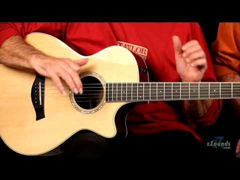 zZounds.com: Taylor 12-Fret Guitar Series