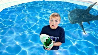 Huge Monster Laid Eggs in My Swimming Pool!