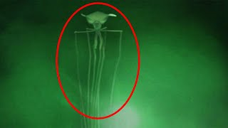 Top 15 SCARY Mysterious Creatures Caught On Video