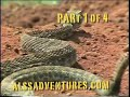 Lost in the Wild Arizona pt 1
