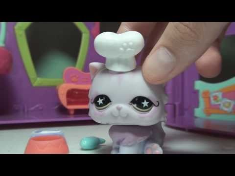 Littlest Pet Shop: LPSlover 4000+ Subscribers Video