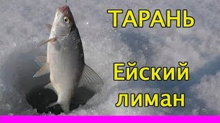 рыбалка на тарань на ейском лимане