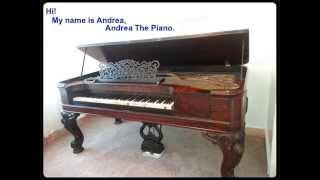 I Am Andrea The Piano