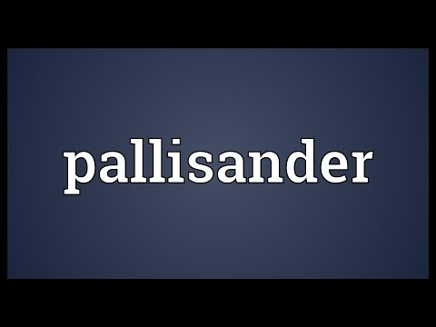Header of pallisander