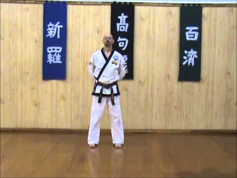 Tang Soo Do - Single Step Drill - Complete Sequence Image 1