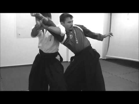 Ogawa Ryu Jujutsu - Training moments in Brazil - July - Image 1