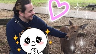 ►Follow Egoraptor and I around NARA PARK with GIRLGAMERGAB!!