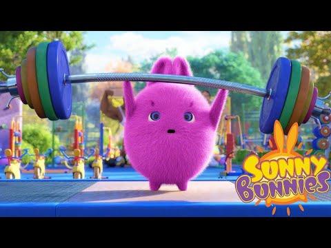 Солнечно Зайчики - Кто сильнее? |  Забавные мультфильмы для детей | WildBrain