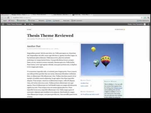 Diy Thesis Theme Reviews