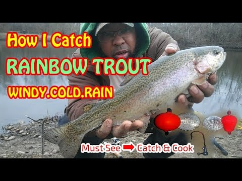 How I Catch Rainbow Trout In The Cold Rain (CATCH & COOK TROUT Video) Crappie Town USA Baby