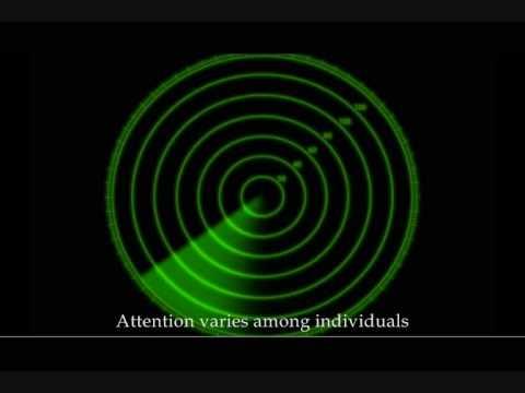 (لا تعلُّم بلا انتباه) فلم وثائقي Music Videos